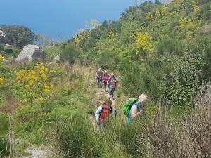 Wanderungen Ischia